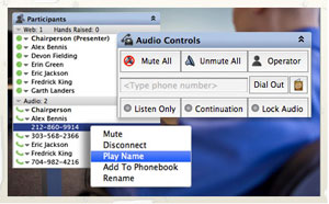 Using the Web to Manage Your Audio Call